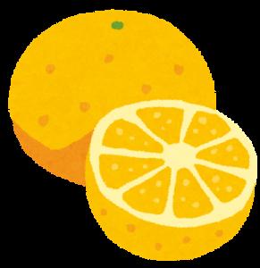 グレープフルーツは膀胱を刺激